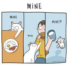 Ideas Funny Cartoons Drawings Jokes Humor For 2019 I Love Cats, Cute Cats, Funny Cats, Cats Humor, Happy Animals, Funny Animals, Cute Animals, Funny Laugh, Hilarious