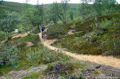 Mountain biking (10) | Saariselkä, Kona Shop Saariselkä: Rent or buy a bike and excursions from www.saariselka.com/kona.shop #mtb #mountainbiking #maastopyoraily #maastopyöräily #saariselkämtb #saariselkä #saariselka #saariselankeskusvaraamo #saariselkabooking #astueramaahan #stepintothewilderness #lapland
