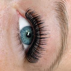 Eye-catching Hybrids by using X-Wrap in mm diameter & Faux Mink Bold in mm diameter Volume Eyelash Extensions, Cool Eyes, Hana, Eyelashes, Vanity, Make Up, Future, Board, Inspiration