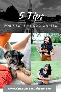 First-Time Dog Owners, New dog owners, new puppy, new dog, furry friend, pawrents