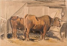 #Karl #Hagedorn #Oxen in a #stable #Watercolour #penandink #animal #painting #modern #British #art #LLFA Cows, Watercolour, Modern Art, Moose Art, Pen And Wash, Watercolor Painting, Watercolor, Contemporary Art, Watercolor Art