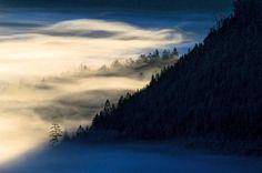 Den Schwarzwald neu entdecken: Into the Wild - SPIEGEL ONLINE - Reise