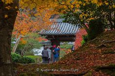 Another take on the entrance to Saishōin (最勝院), a sub-temple of Nanzen-ji in Kyoto During Autumn 2014!