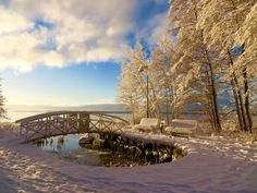 Winter in Finland looks like it stays for a few months, Vaasa 23rd Nov 2015 by Christian Nylund / yle.fi