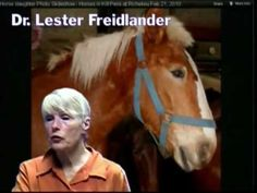 Interview with Dr. Lester Freidlander former slaughterhouse inspector blows the whistle on the corrupt and unhealthy meat industry.