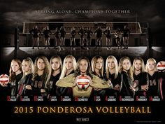 THESE INTENSE PICTURES OF VBALL TEAMS GIVE ME LIFE