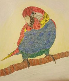 Tropical Parrot Animal Kingdom Color Me Draw By Millie Marotta