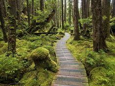 SG̱ang Gwaay Llanagaay on Haida Gwaii | © Dale Simonson / Flickr