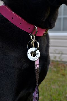 Custom Dog Tag  Handstamped Steel Washer ID for by gracegraffiti, $12.00