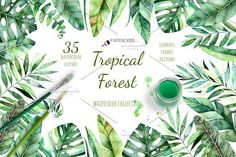 Tropical Forest. Watercolor tropical collection with 35 separate elements (branches and exotic leaves), patterns and frames invitation! This elements can be used as wedding invitations, patterns, blogs, greeting cards, logos, photos, posters, quotes and also combine them to create own unique creations, bouquets, wreaths and more!