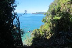 Abel Tasman bush and beach
