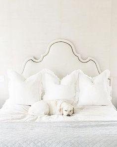 White upholstered headboard and white bedding
