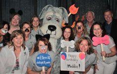 The Maddie's Fund team!