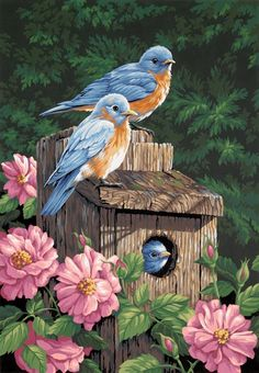 Amazon.com - Dimensions Needlecrafts Paintworks Paint By Number, Garden Bluebirds - Childrens Paint By Number Kits