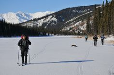 Denali National Park, Alaska  cross country skiing on one of the Triple Lakes