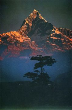Machapuchare at dawn, Nepal Himalaya - by Galen Rowell.