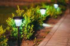 The 5 Best Solar-Powered Outdoor Security Lights