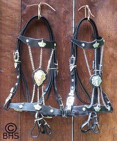 Friesian Tack, Baroque Horse Tack, World Heritage Tack & Costumes Dressage Horses, Draft Horses, Horse Tack, Medieval Horse, Friesian, Saddle Pads, Crown Royal, Horse Stuff, Saddles