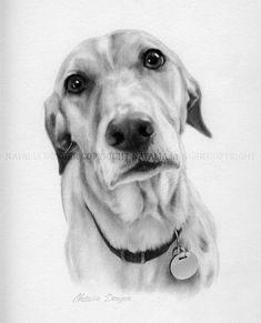 Custom Portrait, Pet, Pencil Drawing, Dog, Cat, Portrait, Animal, Commission, Drawing by Natalia Denger. $60.00, via Etsy.