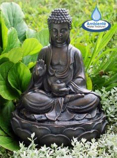 Fuente Solar Ariya Buda