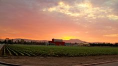 Sunrise over Irvine Valley College