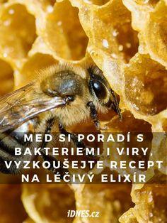Med, mateří kašička a propolis nejsou tak úplně včelí dary, protože zcela dobrovolně nám je včely nedávají. Nicméně včelaři je na oplátku zahrnují svou péčí. Každopádně bychom měli být včelám nejen za tyto jejich produkty vděční. Med