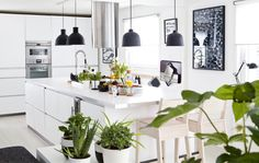 Take a tour of this monochrome, open-plan family home – IKEA Dark Walls, White Walls, Ikea Sortiment, Simple Home Decoration, 1960s Kitchen, Best Home Interior Design, White Furniture, Organizing Your Home, White Cabinets