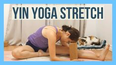 1 Hour Yin Yoga for Flexibility - Hips & Spine Yoga Deep Stretch Yin Yoga Sequence, Yin Yoga Poses, Yoga Sequences, Yin Yoga Benefits, Free Yoga Videos, Yoga Youtube, Yoga For Flexibility, Morning Yoga, Yoga Fashion