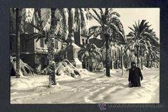 FOTO DE BADALONA: NEVADA DEL 1962 Nevada, Tapestry, Snow, History, Cats, Painting, Outdoor, Vintage Photos, Album