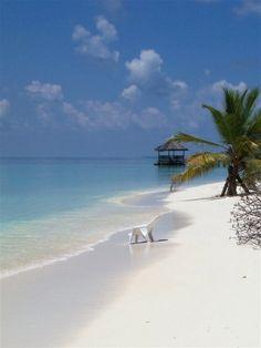 Dhidhoo Finolhu, Maldives Copyright: olivier BERNIE