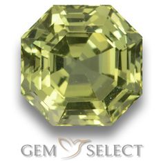 GemSelect features this natural untreated Apatite from Madagascar. This Green Apatite weighs 5.1ct and measures 9.8 x 9.8mm in size. More Asscher Cut Apatite is available on gemselect.com #birthstones #healing #jewelrystone #loosegemstones #buygems #gemstonelover #naturalgemstone #coloredgemstones #gemstones #gem #gems #gemselect #sale #shopping #gemshopping #naturalapatite #apatite #greenapatite #octagongem #octagongems #greengem #green Green Gemstones, Loose Gemstones, Natural Gemstones, Buy Gems, Asscher Cut, Gem S, Gemstone Colors, Madagascar, Shades Of Green