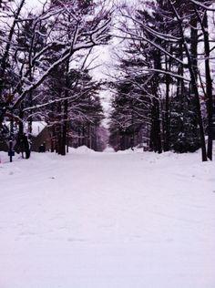 Winter Breeze, Interlochen | Michigan(byiamakili.tumblr.com/)