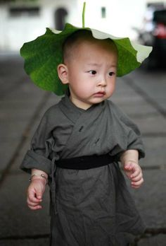 Latest Chinese News Lesson: Xichan Temple's little monk hits the Internet. Xi Chan sì de xiǎo héshàng. Xi Chan 寺 的 小 和尚。 www.gurulu.com