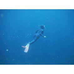 慣れてきたら67mは潜れるようになりました なぜか動画は水中カメラのやつなのでファイルが開けないと出てしまいUPできませんでした残念  #Australia #オーストラリア #greatbarrierreef #グレートバリアリーフ #snorkeling #シュノーケル #潜水 by fun_to_go_somewhere http://ift.tt/1UokkV2