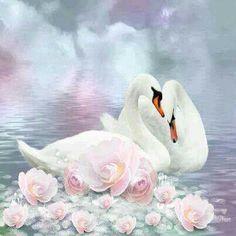 Diamond Embroidery Swan Pictures Of Rhinestones Diamond Mosaic Animals Swan Love, Beautiful Swan, Beautiful Artwork, Beautiful Birds, Swan Pictures, Mosaic Pictures, Swan Painting, 5d Diamond Painting, Cross Paintings
