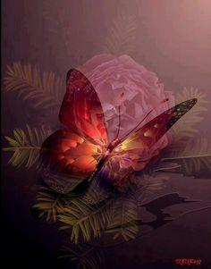 butterfly wallpaper for mobile phone Butterfly Wallpaper, Butterfly Art, Butterfly Sayings, Butterfly Kisses, Art Papillon, Beautiful Butterflies, Fractal Art, Word Of God, Bible Verses