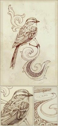 Bird pattern to use as inspiration for pyrography project.