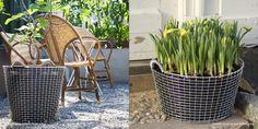 korbo baskets - Google Search Baskets, Canning, Google Search, Products, Hampers, Home Canning, Basket, Gadget, Conservation