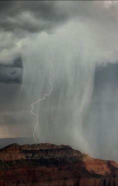 Amazing photo of virga with an added plus--lightning!.
