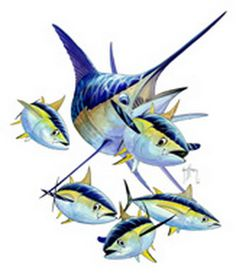 1000+ images about ART - Guy Harvey on Pinterest | Window ...