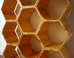 THE HONEYCOMB Set of 9 Hexagon Cubbies with by EONeyeofnature