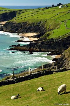 would love to go to Ireland