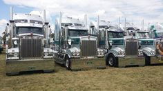 When one nice Kenworth T series is not enough. Iammo transport have plenty more.