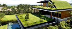 Honey, can you go mow the....roof?  Ten Insights for Designing Eco-Friendly Green Homes