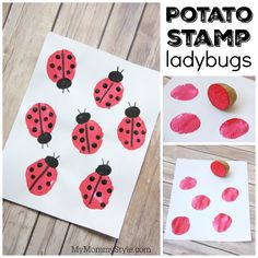 These ladybugs are easy and fun to make. You use a potato as a stamp for the body of the ladybug and black finger paint for the heads and spots. You will need: -white card stock paper -potato -red paint -black paint -black permanent marker (optional) Directions: Cut a potato in half and let …