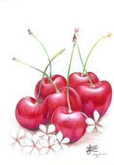 Cherries by Jam1992.deviantart.com on @DeviantArt