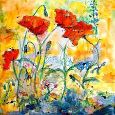 Poppies Provencale