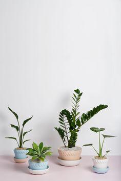 Mix & Match Planter Pots | Angus & Celeste