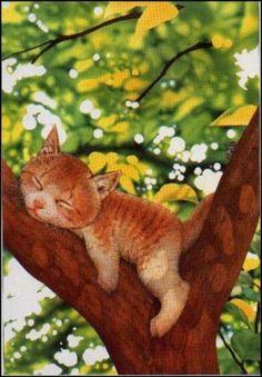 Gato Accesorios: Gatos (Makoto Muramatsu)