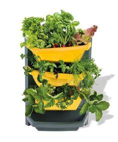 Homeplaza - Preisgekröntes Bepflanzungs-System schafft optimale Bedingungen - Kräuter-, Blumen- und Naschgarten für jeden Balkon